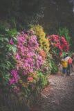 Folk i de monteringsSt Michael trädgårdarna royaltyfria foton