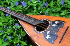 Folk mandolin Royaltyfria Bilder