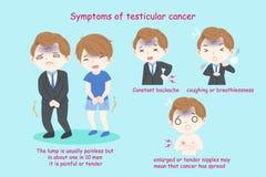 Folk med testicular cancer royaltyfri illustrationer