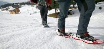 Folk, medan snowshoeing i bergen Royaltyfri Foto