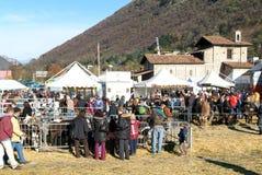 Folk observera djuren på den lantliga mässan Royaltyfri Fotografi