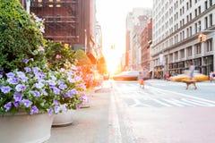 Folk och bilar med färgrika blommor på den New York City gatan royaltyfri foto