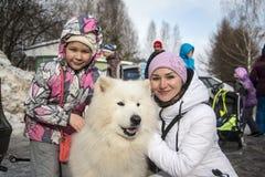 Folk och hundkapplöpning under berömmen av slutet av vinternamnet Arkivbild