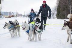 Folk och hundkapplöpning under berömmen av slutet av vinternamnet Fotografering för Bildbyråer