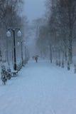 Folk och snö Fotografering för Bildbyråer