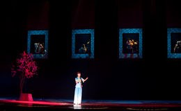 Folk opera: Akacia Royaltyfri Bild