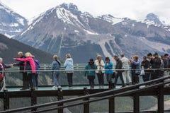 Folk på den kanadensiska Skywalken som ser de steniga bergen Royaltyfri Bild