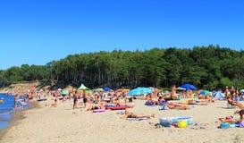 Folk på en sandig strand i Kulikovoen, Östersjön Royaltyfri Foto