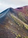 Folk på område mellan krater på Mount Etna Arkivbild