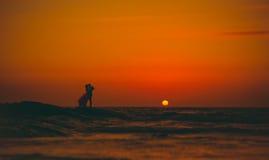 Folk på solnedgången Royaltyfria Foton