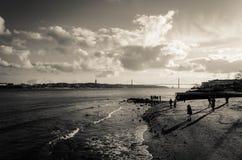 Folk på stranden i svartvitt arkivfoto