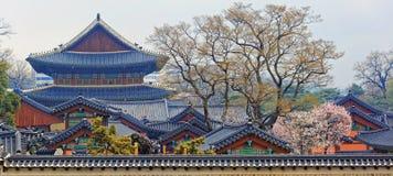 folk slott för national för gyeongbokgungkorea museum royaltyfria bilder