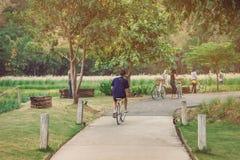 Folk som övar, genom att cykla i aftonen royaltyfri bild