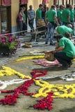Folk som arbetar i mattan av blommor Royaltyfri Foto