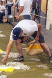 Folk som arbetar i mattan av blommor Arkivbild