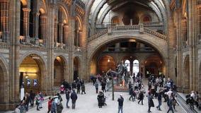 Folk som går i naturhistoriamuseet, London, UK stock video