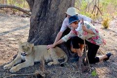 Folk som går med lejon Royaltyfri Foto