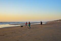 Folk som går och spelar med deras hund på stranden under solnedgång arkivfoto