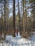 Folk som går på den djupa skogen i vinter arkivfoto
