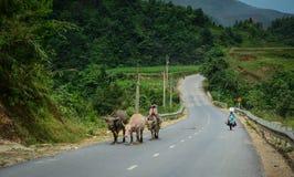 Folk som går på den lantliga vägen i Vietnam Royaltyfria Foton