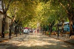 Folk som går på en fot- stadsgata med träd på sidan royaltyfri bild