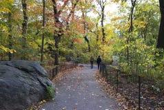 Folk som går till och med Central Park fotografering för bildbyråer
