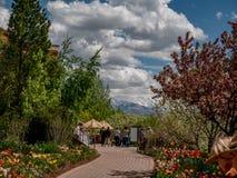 Folk som promenerar en bana i en trädgård med dekorkade bergen i bakgrunden arkivfoto