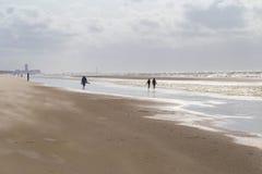 Folk som promenerar stranden mot starka vindar som bär sand på Nordsjönkusten, Belgien Royaltyfri Foto