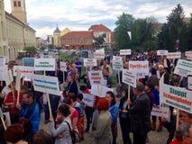 Folk som protesterar mot ovettig skogsavverkning Royaltyfria Foton