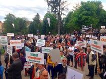 Folk som protesterar mot skogsavverkning Royaltyfri Foto