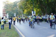 Folk som rider cykeln runt om den Chiang Mai staden Arkivfoton