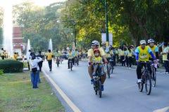 Folk som rider cykeln runt om den Chiang Mai staden Royaltyfri Fotografi