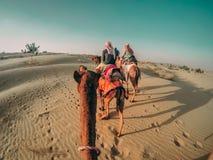 Folk som rider kamel i en öken i Indien med fotspår som visar på sanden arkivbild