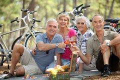 Folk som rostar på picknicken Fotografering för Bildbyråer