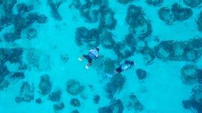 Folk som simmar i havet Flyg- sikt, bästa sikt Färgen av Arkivfoto