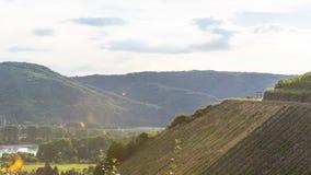 Folk som sitter på bänken på en vinrankakoloni på ett härligt varmt, soligt, sommardag i Västtyskland Royaltyfria Bilder