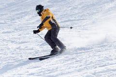 Folk som skidar i vintern royaltyfri bild