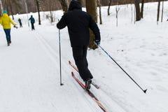 Folk som skidar i vinterträn Arkivfoton