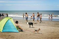 Folk som spelar i en strand arkivbild
