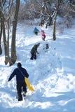 Folk som spelar i snö Fotografering för Bildbyråer