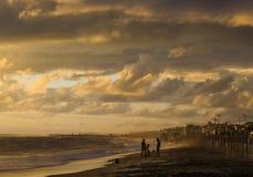 Folk som spelar med hunden på stranden på solnedgången arkivbild