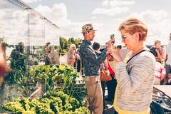 Folk som tar foto med deras mobiler på taket av Tammerfors Talo royaltyfria bilder
