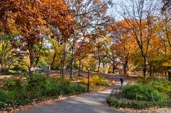 Folk som tycker om en gå i Central Park New York City Arkivbilder