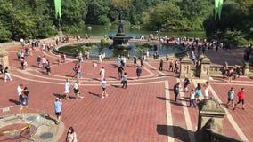 Folk som tycker om sommarväder på Central Park stock video
