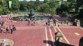 Folk som tycker om sommarväder på Central Park arkivfilmer