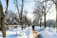 Folk som tycker om Sunny Winter Day Following en stark snöstorm i den i stadens centrum Bucharest staden Royaltyfri Fotografi