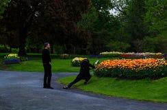 Folk som tycker om tulpan på skärm i Washington Park Albany NY på en regnig eftermiddag i vår Royaltyfri Bild