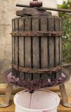 Wine-making. Technology of wine production. stock photo