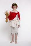 Folk woman harvester Royalty Free Stock Photography