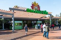 Folkbesök San Diego Zoo som grundas i 1916 Royaltyfri Bild